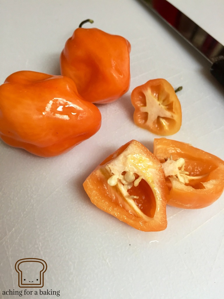 Tomatoes 3